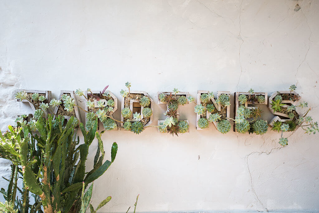 drive-swim-fly-san-juan-bautista-california-jardines-mexican-restaurant-sign-succulents-straight