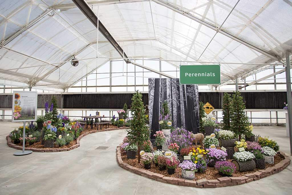 drive-swim-fly-california-spring-trials-gilroy-perennials-redwood-forest
