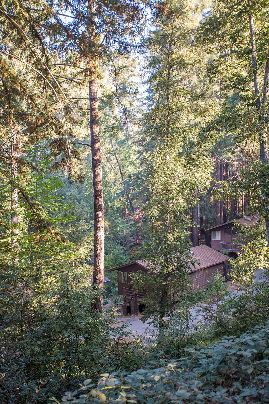drive-swim-fly-california-mount-hermon-christian-retreat-camp-outdoor-cabin-in-woods-mountain