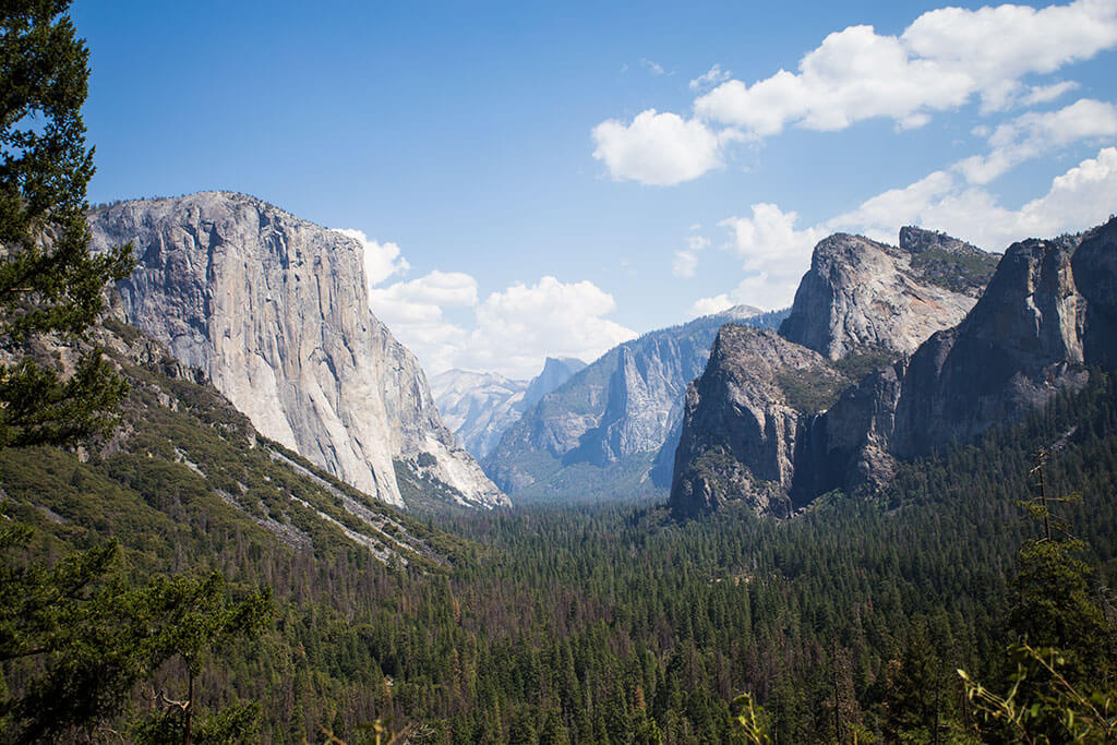 drive-swim-fly-california-yosemite-national-park-oakhurst-ernas-elderberry-house-fine-dining-half-dome