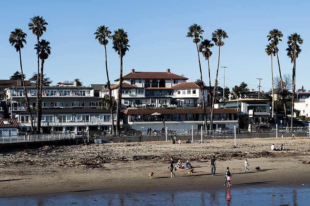 drive-swim-fly-santa-cruz-california-beach-ocean-palm-trees-crop