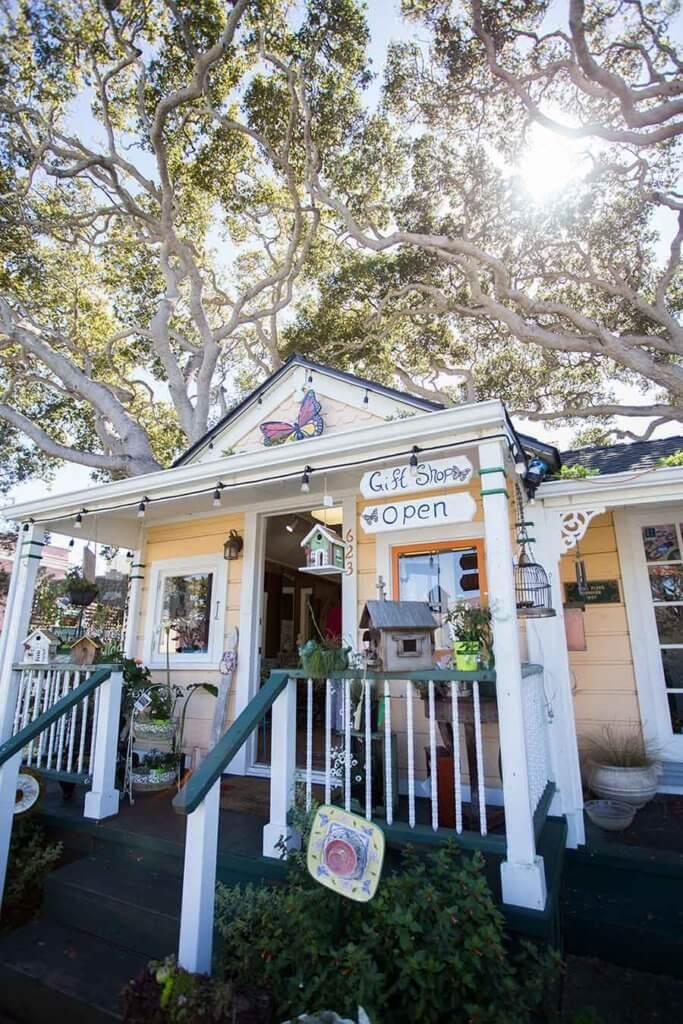 drive-swim-fly-white-hart-tea-room-pacific-grove-california-gift-shop