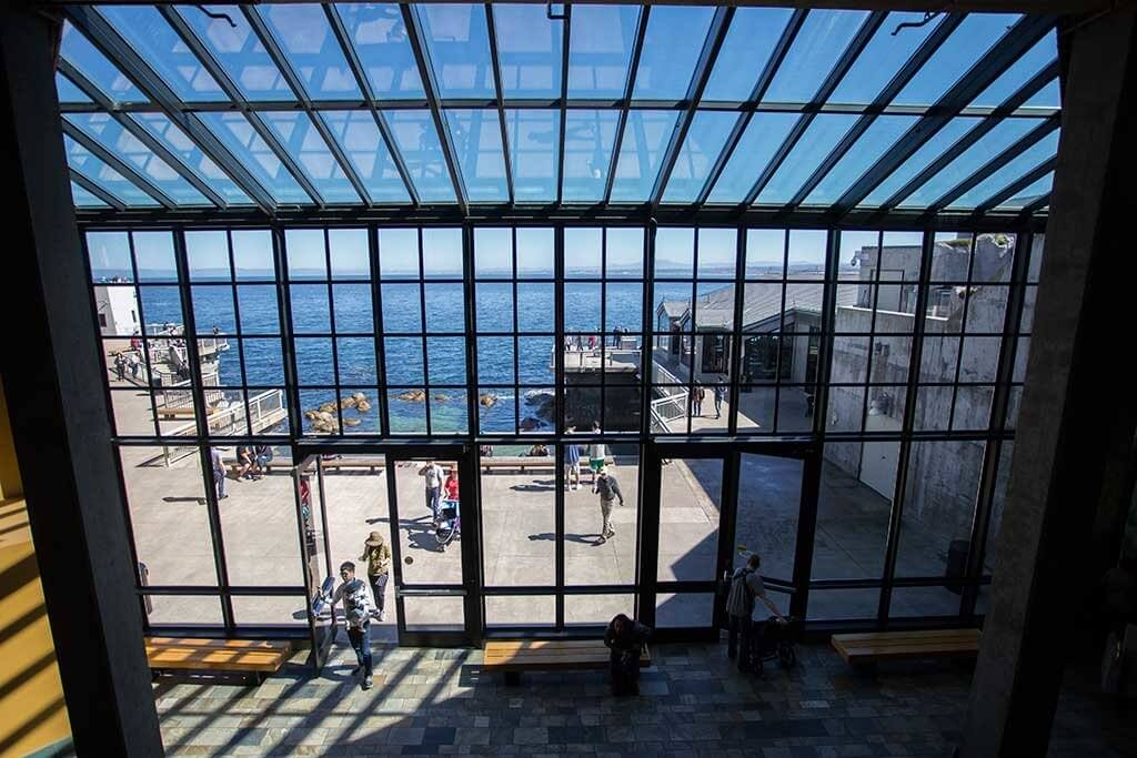 drive-swim-fly-monterey-bay-aquarium-california-monterey-peninsula-ocean-view-high-windows