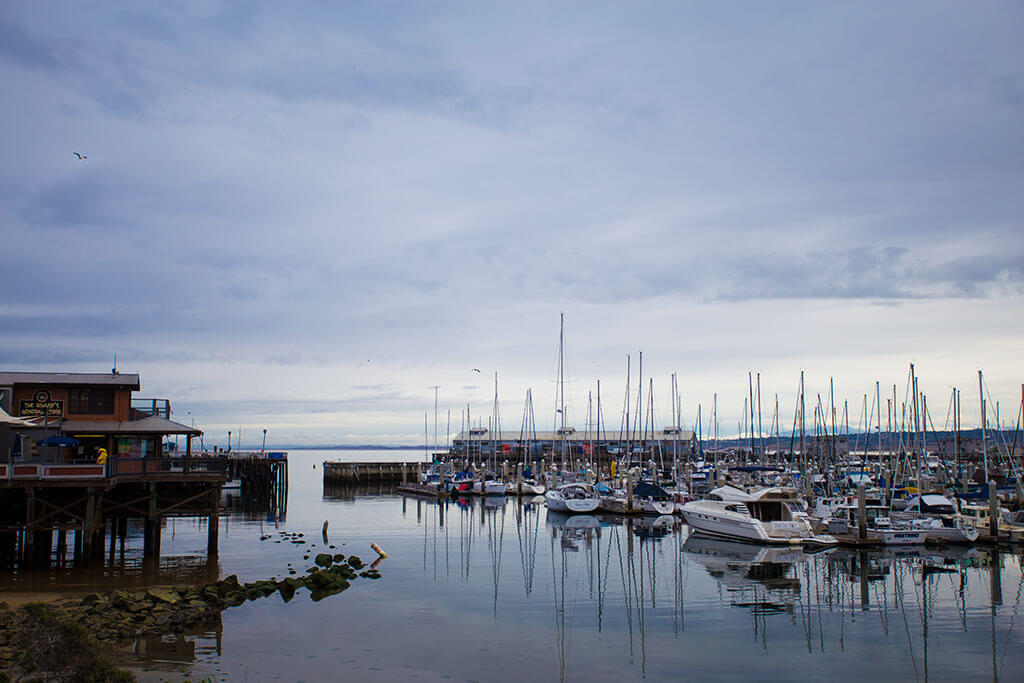 drive-swim-fly-monterey-california-water-and-leaves-marina-boats