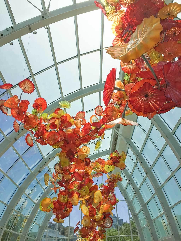 drive-swim-fly-seattle-washington-portland-oregon-vacation-2015-selfietrip-chihuly-garden-and-glass-hanging-art-installation