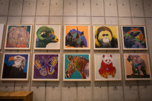 drive-swim-fly-california-academy-of-sciences-san-francisco-nitelife-adult-museum-night-animal-pop-art