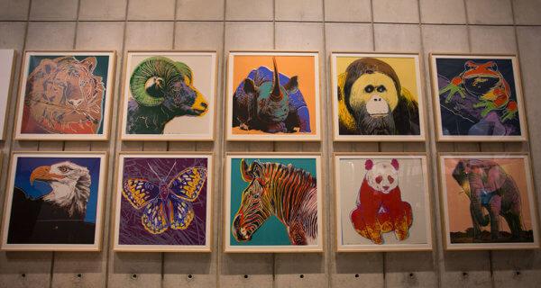 drive-swim-fly-california-academy-of-sciences-san-francisco-nitelife-adult-museum-night-animal-pop-art