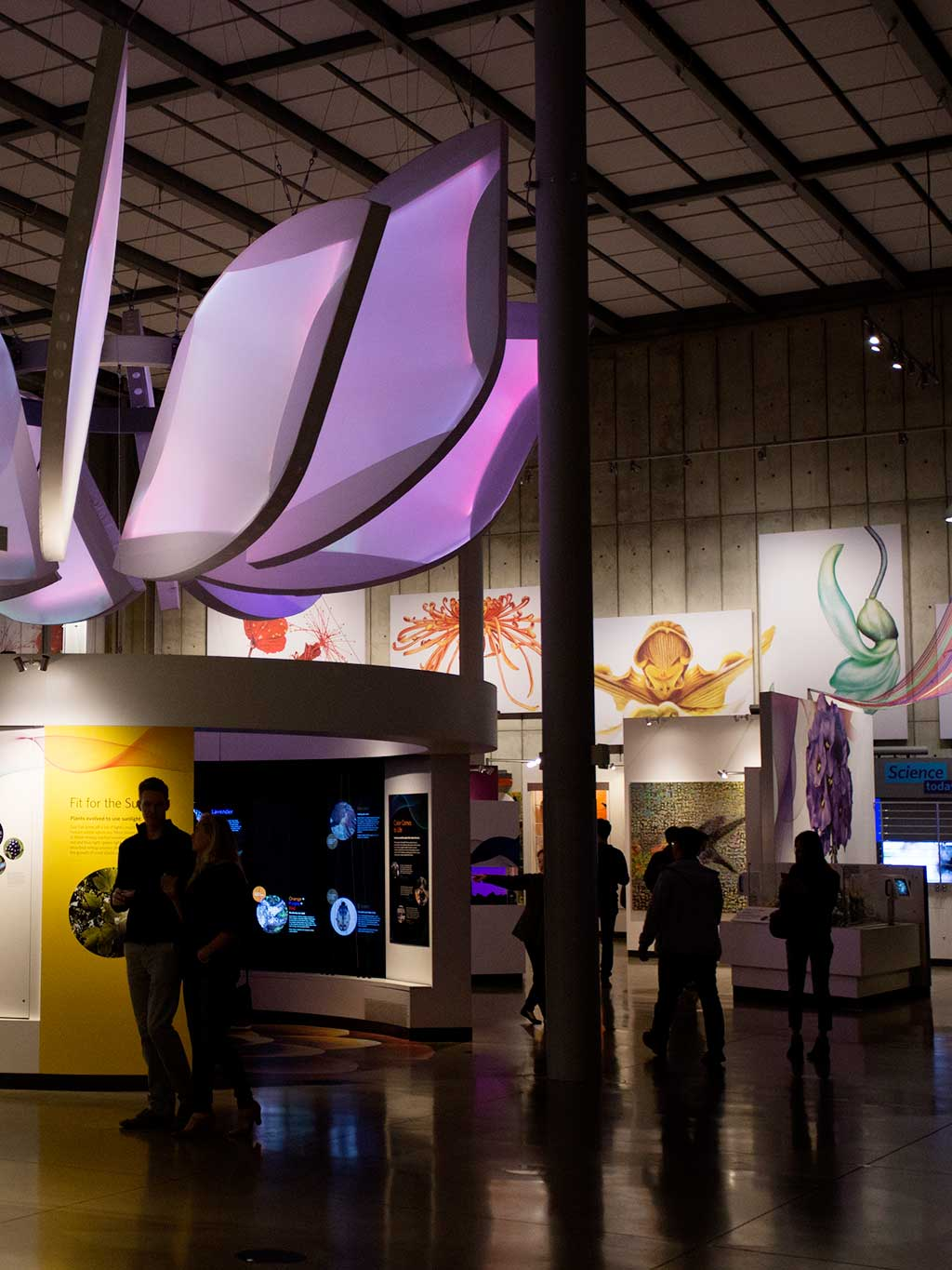 drive-swim-fly-california-academy-of-sciences-san-francisco-nitelife-adult-museum-night-color-of-life