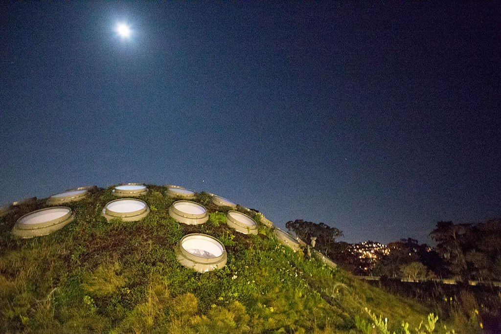 drive-swim-fly-california-academy-of-sciences-san-francisco-nitelife-adult-museum-night-rooftop-garden-dome-living-roof