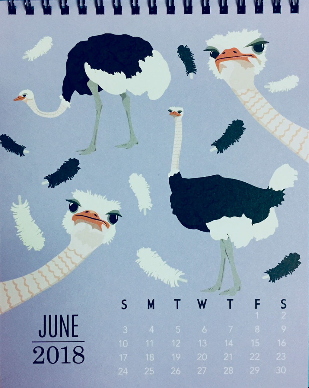 drive-swim-fly-solvang-california-ostrich-land-calendar