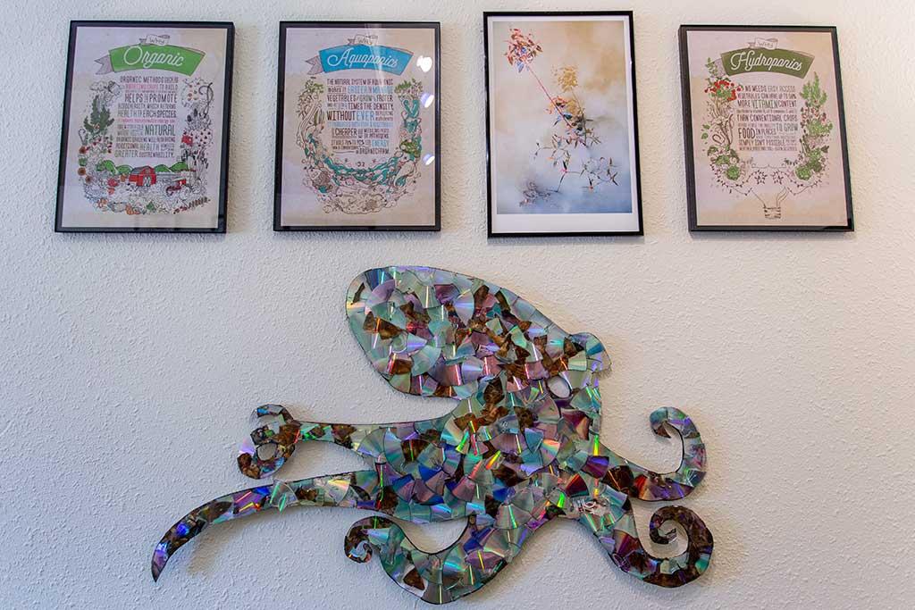 drive-swim-fly-san-juan-bautista-california-willis-cottage-living-room-octopus