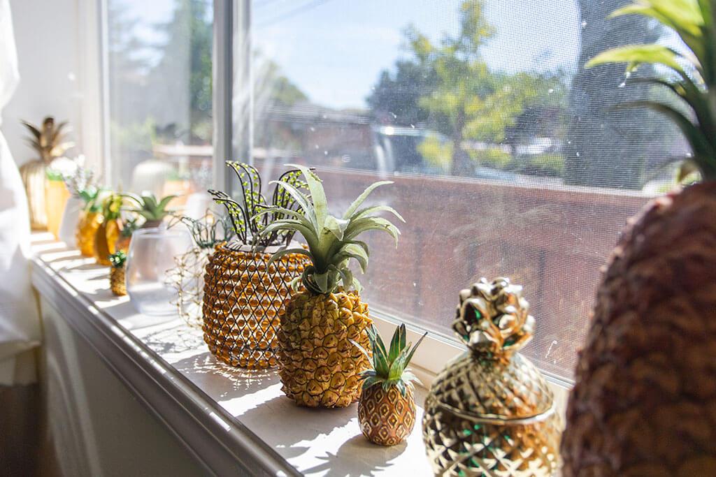 drive-swim-fly-san-juan-bautista-california-willis-cottage-window-sill-pineapples