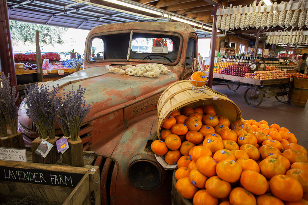 drive-swim-fly-california-casa-de-fruita-roadside-attraction-pacheco-pass-highway-pit-stop-oranges-antique-truck