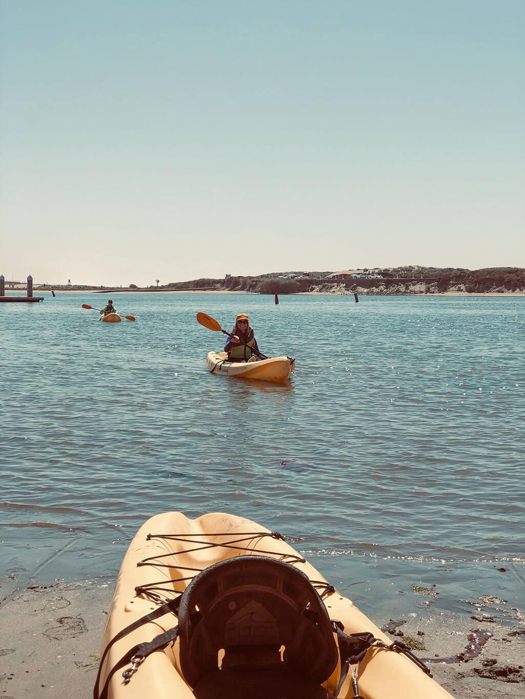drive-swim-fly-elkhorn-slough-moss-landing-california-kayak-kayaking-pacific-ocean