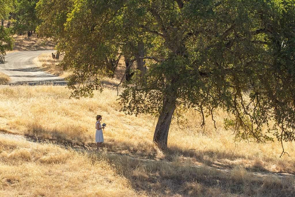 drive-swim-fly-wedding-photography-sacramento-california-phoebe-josh-wedding-ceremony-grassy-hill