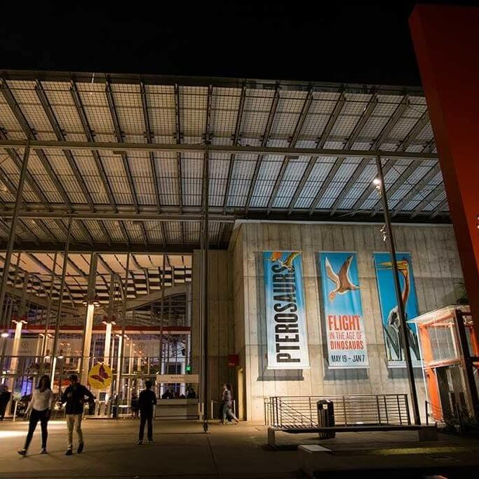 drive-swim-fly-california-academy-of-sciences-san-francisco-nitelife-adult-museum-night-front-building