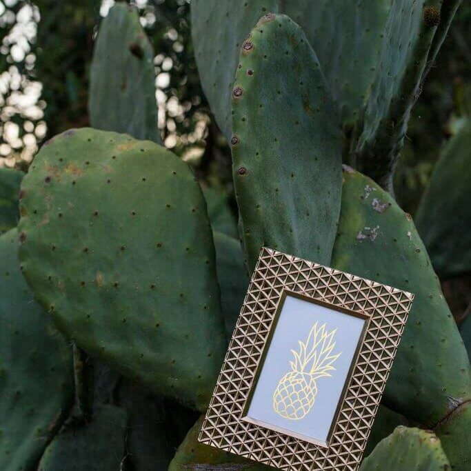 drive-swim-fly-california-pineapple-collection-cactus-pineapple-frame-shiny-dusk